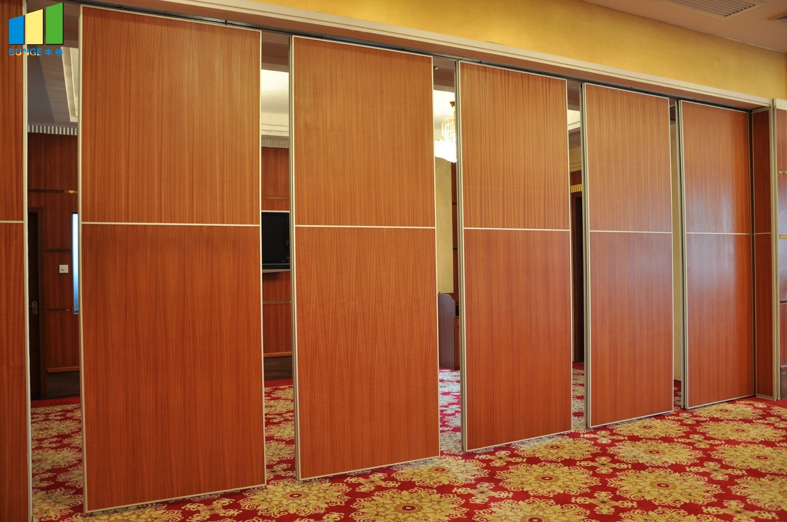 Bunge-Find Partition Door Design Soundproof Acoustic Wall Partitions-13